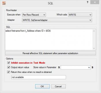 Executing user-defined SQL statements